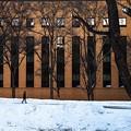Photos: 北海道大學