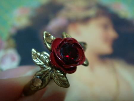 紅い薔薇@Michal Negrin
