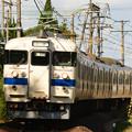 写真: 本州の九州車