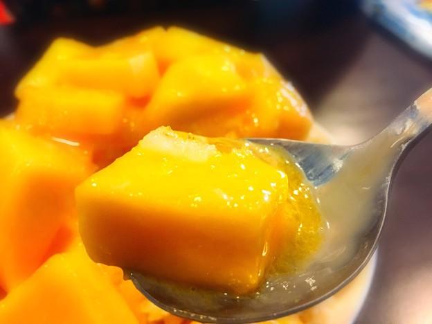 新鮮芒果牛嬭ダイ冰2