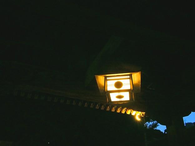 王子稲荷神社 灯り