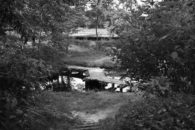 何処への橋