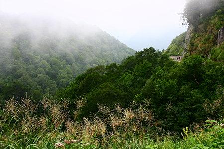 霧の白山スーパー林道