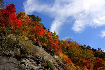 紅葉と雲  白山スーパー林道