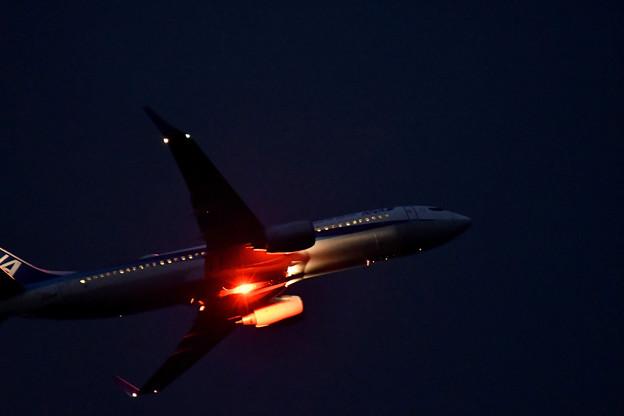 写真: 夜間飛行