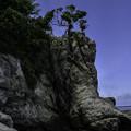 写真: 江の島にて