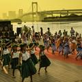 写真: お台場でフラダンス(子供編)