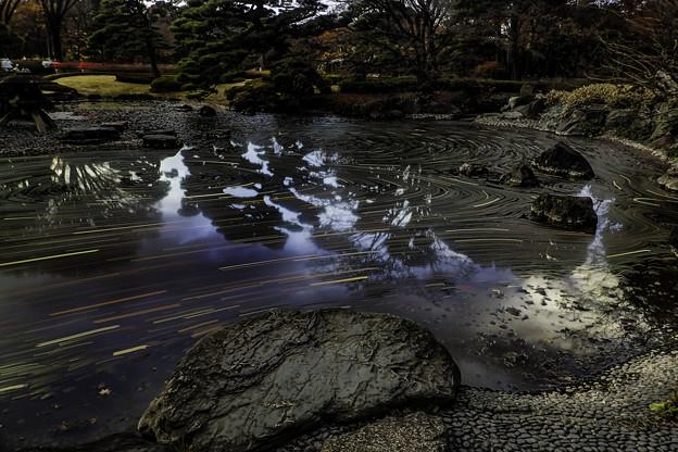写真: 晩秋の東御苑