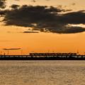 写真: 夕焼け列車
