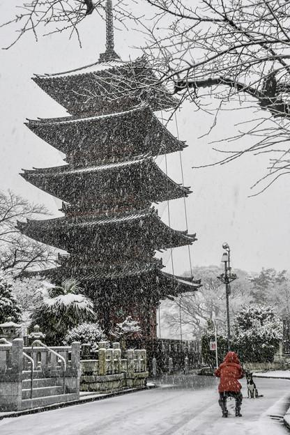 雪の本門寺 (2)