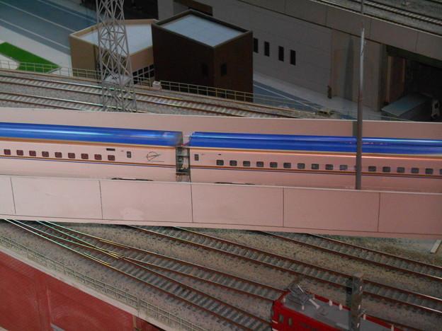 DSCN6419