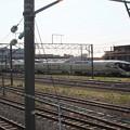 TRAIN SUITE 四季島 (1)