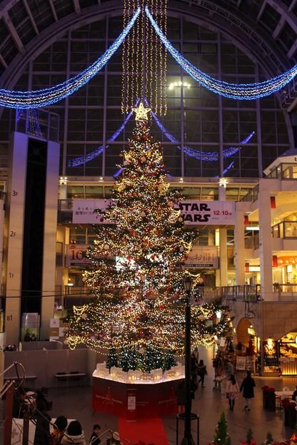 サッポロファクトリー アトリウム 「ジャンボクリスマスツリー」 (1)