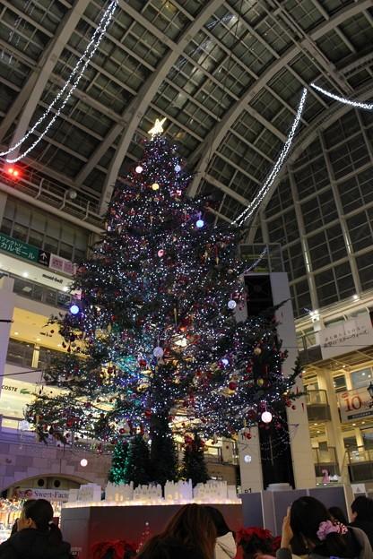 サッポロファクトリー アトリウム 「ジャンボクリスマスツリー」 (4)