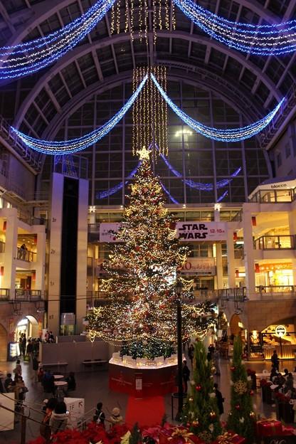 サッポロファクトリー アトリウム 「ジャンボクリスマスツリー」