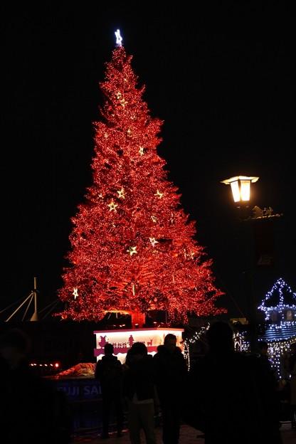 第20回 はこだてクリスマスファンタジー (4)
