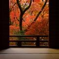 写真: 錦秋の京都2017 宝筐院3