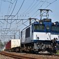 Photos: EF64 1010牽引鹿島貨物