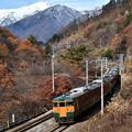 Photos: 115系普通列車