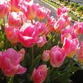 17-04-04-17-12-20-388_photo