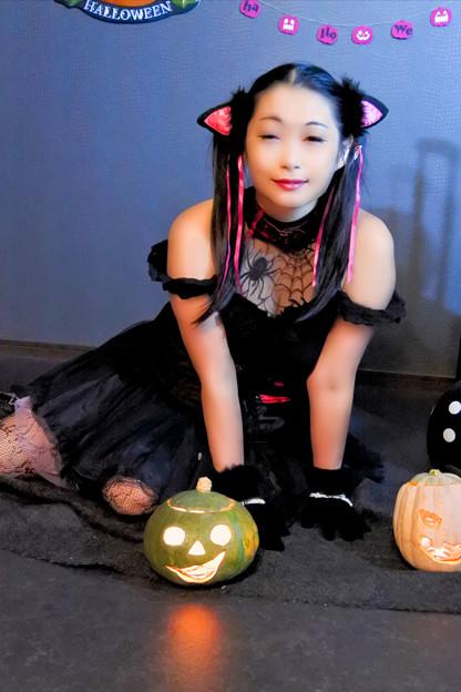 Black cat's vampire