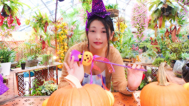 Witch Flower Garden