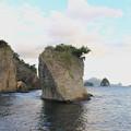 写真: 浮島海岸