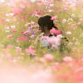 Photos: 秋色の帰り道