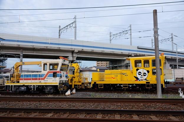 京成電鉄 京成パンダ