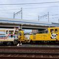 写真: 京成電鉄 京成パンダ
