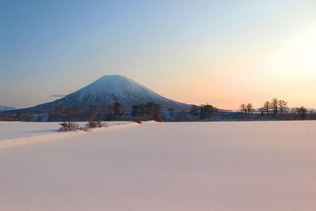 色づく雪原と羊蹄