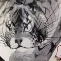 猫なの?虎なの?