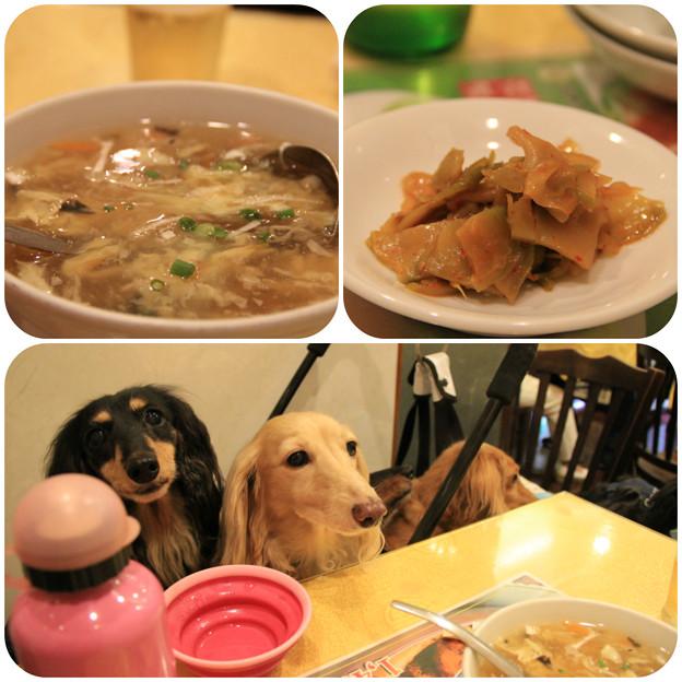 スープ&搾菜