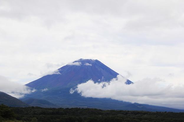 湖上から見る富士山