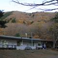写真: 秋の本栖湖いこいの森キャンプ場