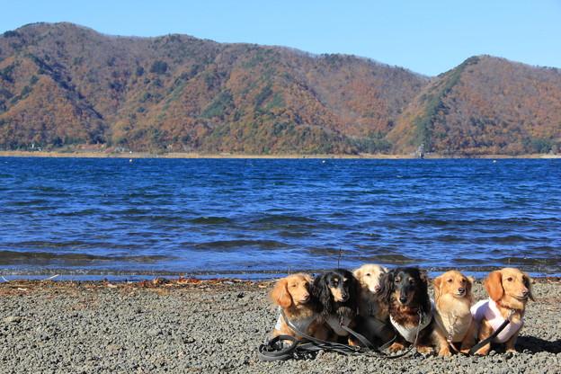 秋の本栖湖をバックに