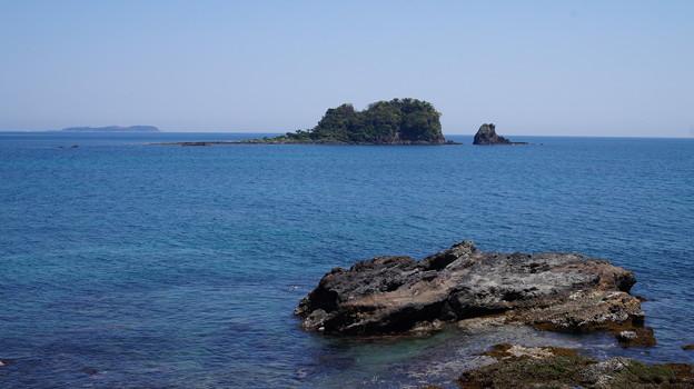 写真: DSC02237 川奈海岸