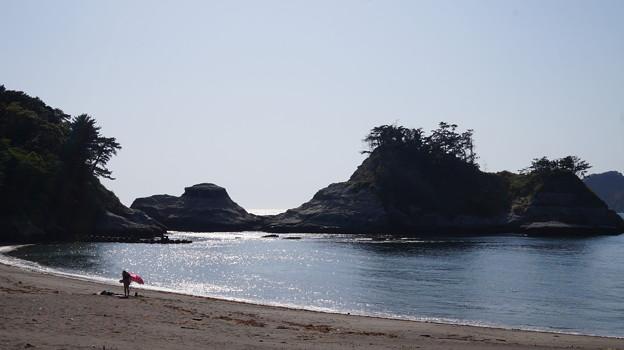 写真: DSC02347 乗浜海岸