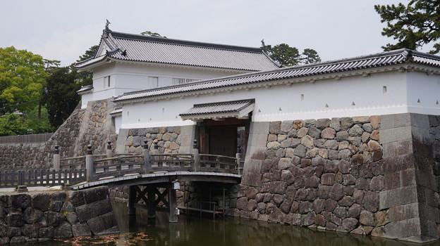 写真: DSC02432小田原城址公園