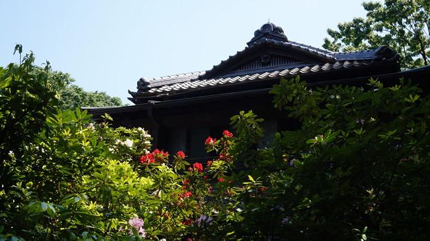 DSC02693たてもの園(高橋是清邸)