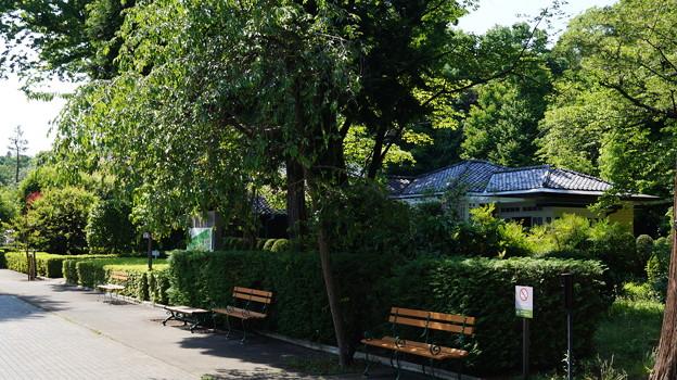 写真: DSC02799たてもの園
