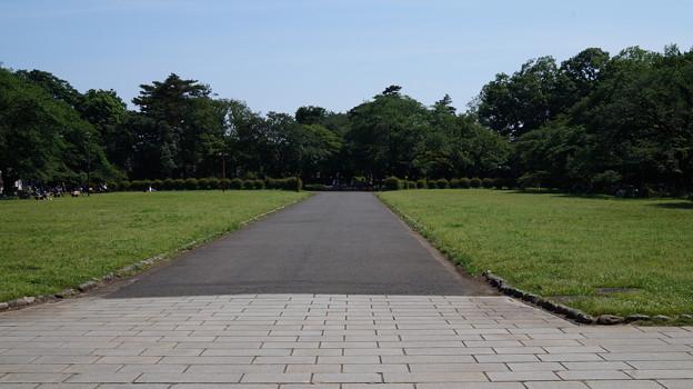 写真: DSC02800たてもの園