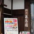 DSC03191掛川花鳥園