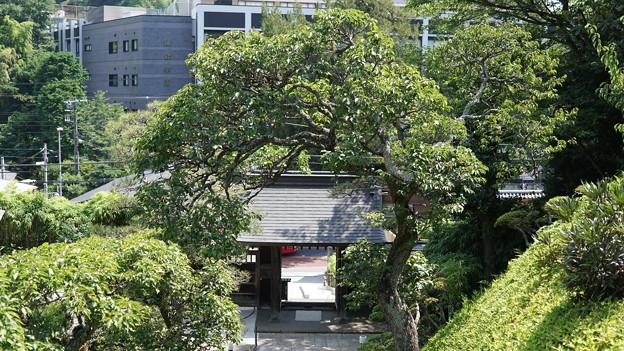禅居院10