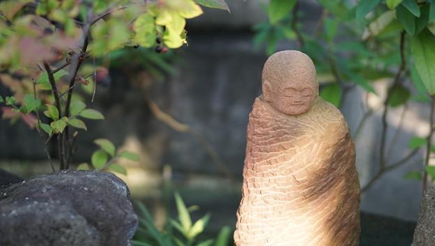 常泉寺(花寺・大和)26