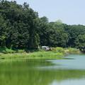 国営武蔵丘陵森林公園3