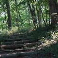 国営武蔵丘陵森林公園5