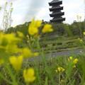 塔と吉備路