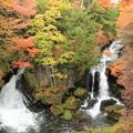 写真: 2348 色付き始めの竜頭の滝@栃木