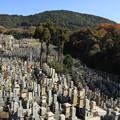 写真: 2396 鳥葬の地 鳥辺野@京都